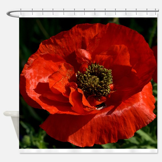 Vibrant Red Poppy Shower Curtain