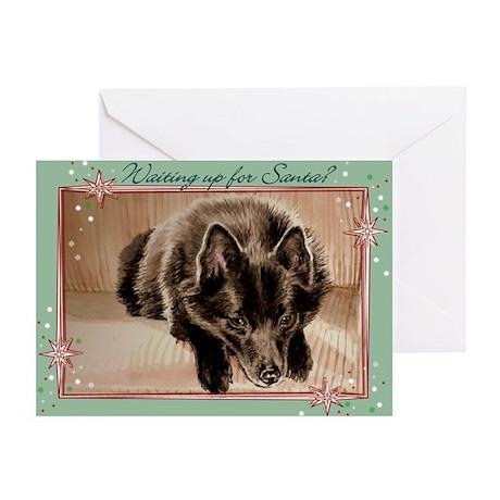 Schipperke Christmas Cards (Pk of 10)