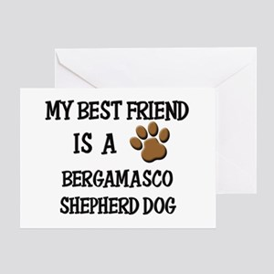 My best friend is a BERGAMASCO SHEPHERD DOG Greeti