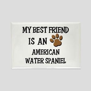 My best friend is an AMERICAN WATER SPANIEL Rectan