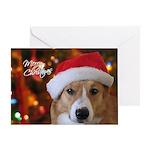 Pembroke Welsh Corgi Single Christmas Card