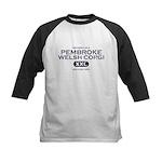 Property of Pembroke Corgi Kids Baseball Jersey