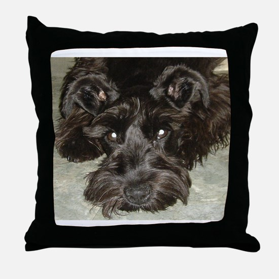 Cute Mini Throw Pillow