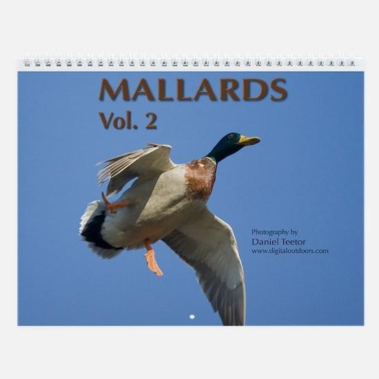 Mallards, vol. 2 Wall Calendar