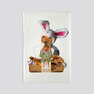 Easter Bunny Tiger Rectangle Magnet
