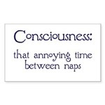 Consciousness Naps Rectangle Sticker