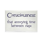Consciousness Naps Rectangle Magnet (10 pack)