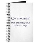 Consciousness Naps Journal
