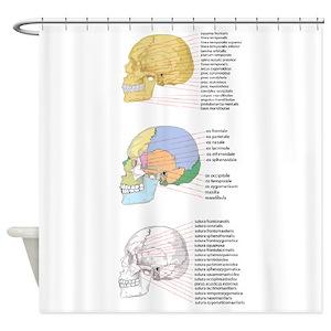 Human Anatomy Shower Curtains