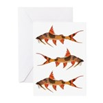 Goonch Catfish Greeting Cards