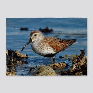 A Solitary Dunlin at the Ferry Jetty 5'x7'Area Rug