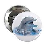 Happy Dolphin 2.25