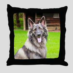 Drogo 2018 Throw Pillow