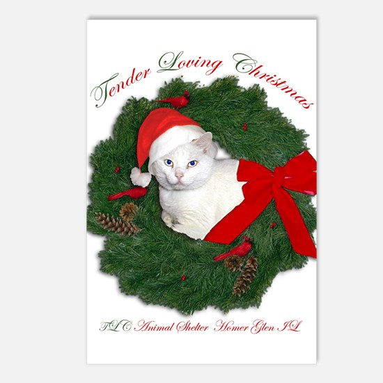 Shorty the cat in wreath Postcards (Package of 8)