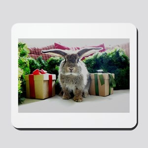 Cute rabbit & gifts Mousepad