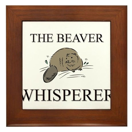 Mr chews asian beaver galleries — photo 12