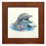 Happy Dolphin Framed Tile