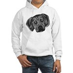 Puggle Puppy Hooded Sweatshirt
