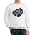 Puggle Puppy Sweatshirt