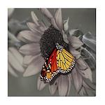 Butterfly Ceramic Tiles & Coasters Tile Coaste