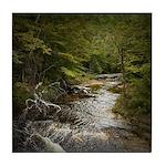 River In The Woods Ceramic Tile Coaster