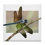 Dragonfly Ceramic Tiles & Coasters Tile Coaste