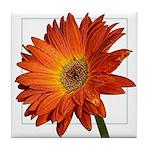 Flowerceramic Tiles & Coasters Tile Coaster