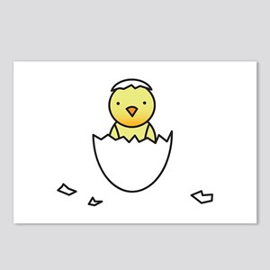 Baby Chick Postcards (Package of 8)