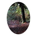 Fall Forest Oval Ornament