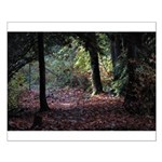 Fall Forest Small Poster