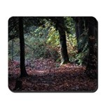 Fall Forest Mousepad