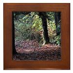 Fall Forest Framed Tile