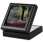 Fall Forest Keepsake Box