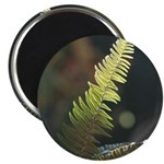 Fern Frond Magnets