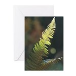 Fern Frond Greeting Cards