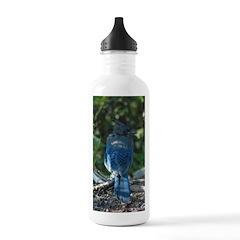 Steller's Jay Stainless Water Bottle Water Bottle