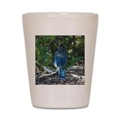 Steller's Jay Shot Glass
