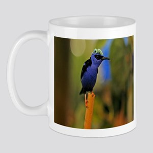 Blue Tropical Bird Mug