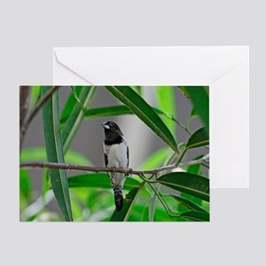 Society Finch Greeting Card