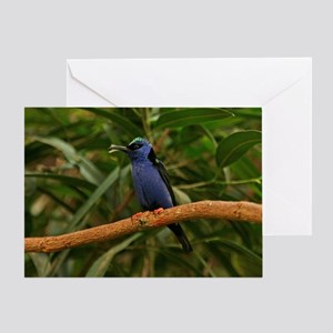 Blue Exotic Bird Greeting Card