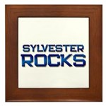 sylvester rocks Framed Tile