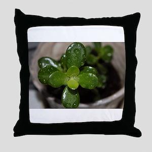 Jade Throw Pillow