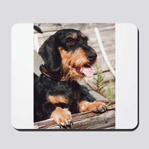 Wire Haired Afternoon Mousepad