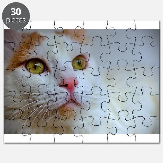 turkish van 2 Puzzle