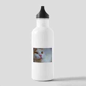 turkish van 2 Water Bottle