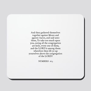 NUMBERS  16:3 Mousepad