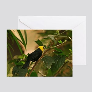 Unique Tropical Bird Greeting Card
