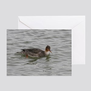 Female Merganser Greeting Card