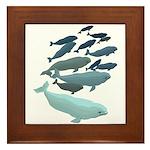 Beluga Whale Art Framed Tile