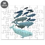 Beluga Whale Art Puzzle